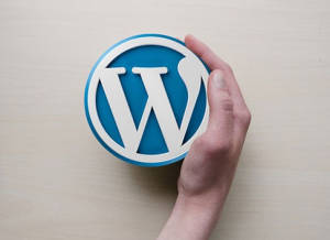 Free wordpress plugins
