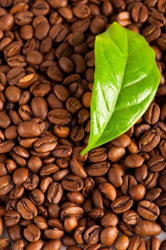 Boost Your Daily Life with Organic Caffeine