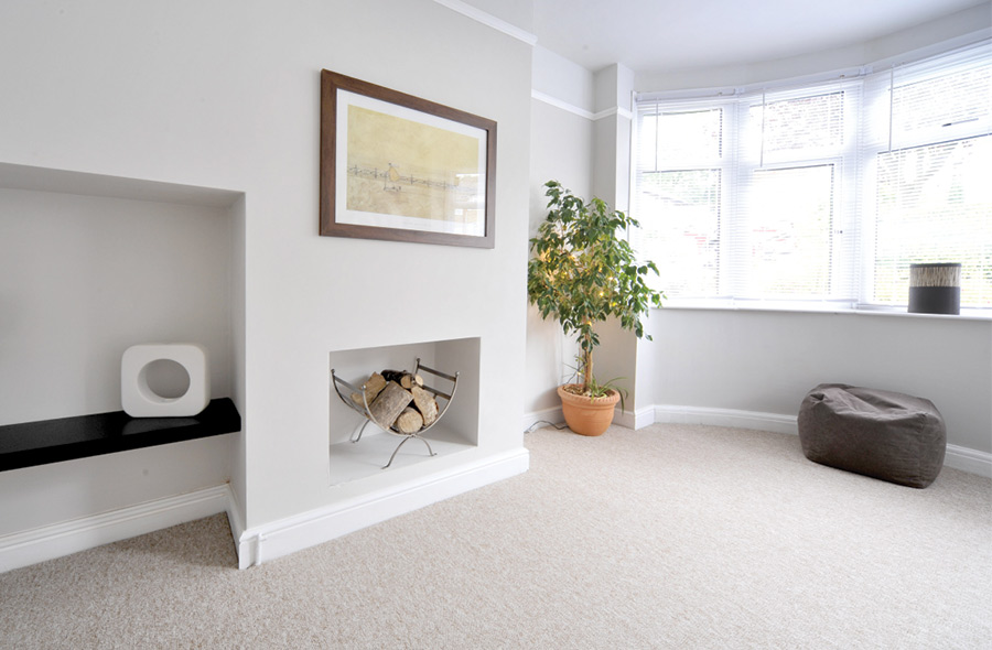 Revitalize Your Home
